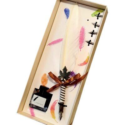 Set cadou de caligrafie cu pana naturala alba, 5 penite si sticluta de cerneala