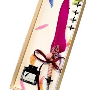 Set cadou de caligrafie cu pana naturala roz, 5 penite si sticluta de cerneala